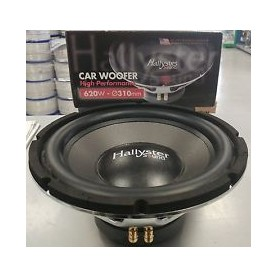 WOOFER D310 620W 4 OHM HALLYSTER