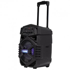 CASSA AMPLIFICATA TIPO TROLLEY C/BLUETOOTH-USB-